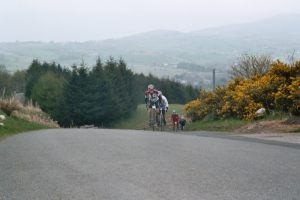 fred_whitton_06_d20